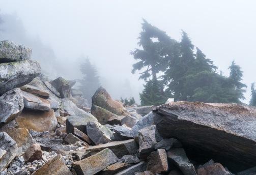 Mt. Pilchuck-8